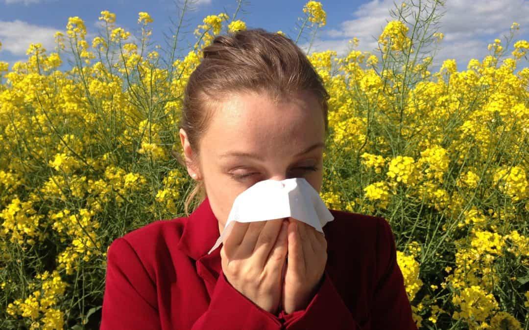 Cómo prevenir las alergias en casa